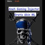Aneh Gaming Injector