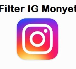 filter instagram monyet
