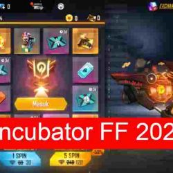 Incubator FF Februari 2021
